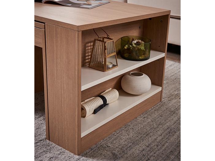 Modern Coffee Table With shelf